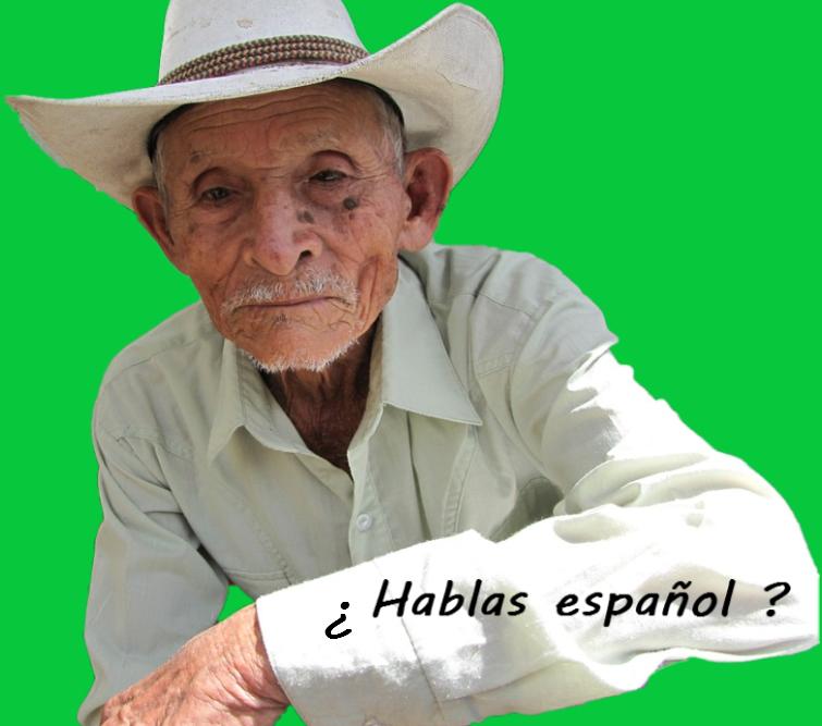 Apprendre l'espagnol dans les pays hispanophones