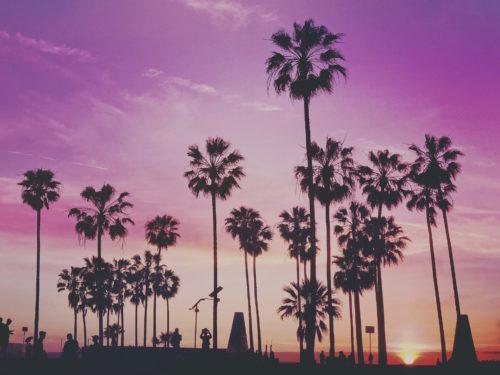 Votre séjour linguistique à Los Angeles